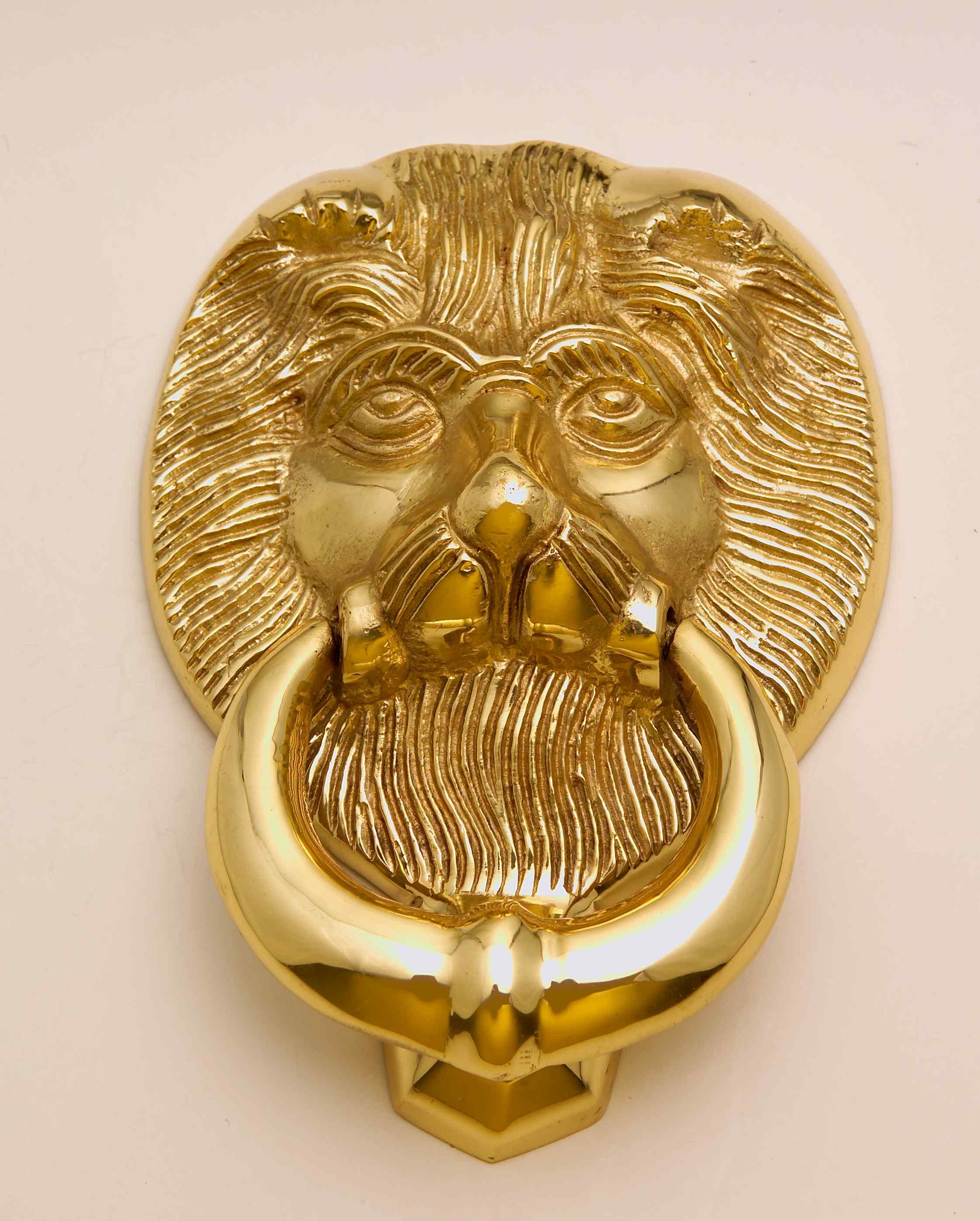 Door knockers options - Lion head brass door knocker ...